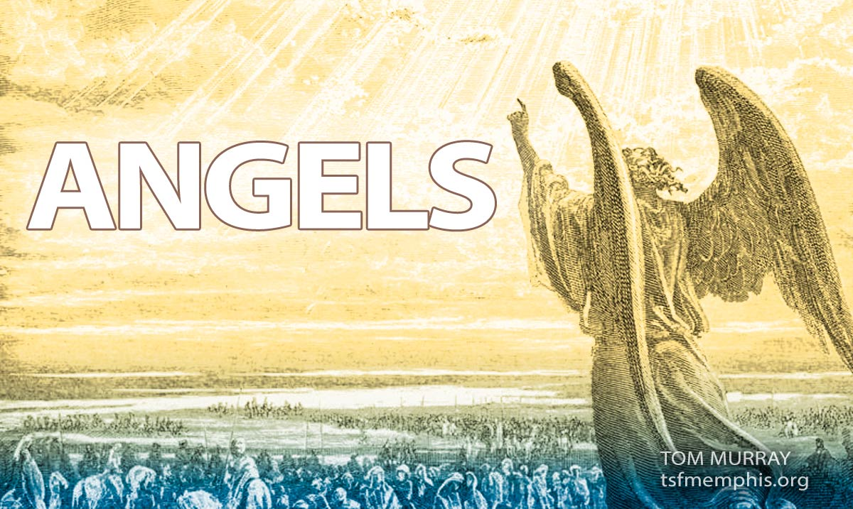 truth-seekers-fellowship-tommurray-angels